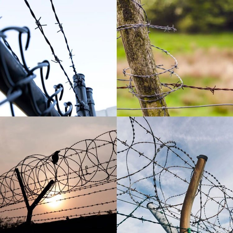 barbed wire aoolication21-9-14-1